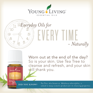 everyday-oils-tea-tree