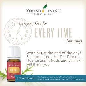 everyday-oils-tea-tree