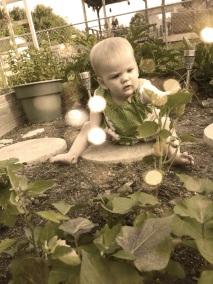 Garden Angel.