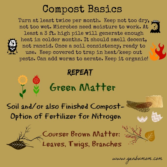 Compost Basics Best